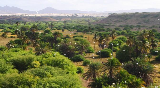 Rundfahrt auf Boa Vista